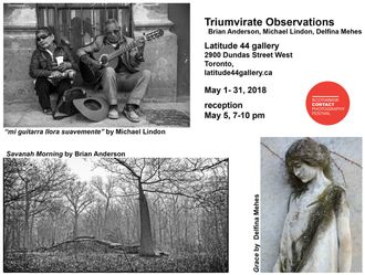 Triumvirate Observations featuring Brian Anderson, Michael Lindon, and Delfina Mehes